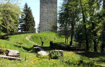 Randonnée à la découverte d'un château médiéval, en Savoie